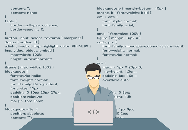 programmer-1653351_640